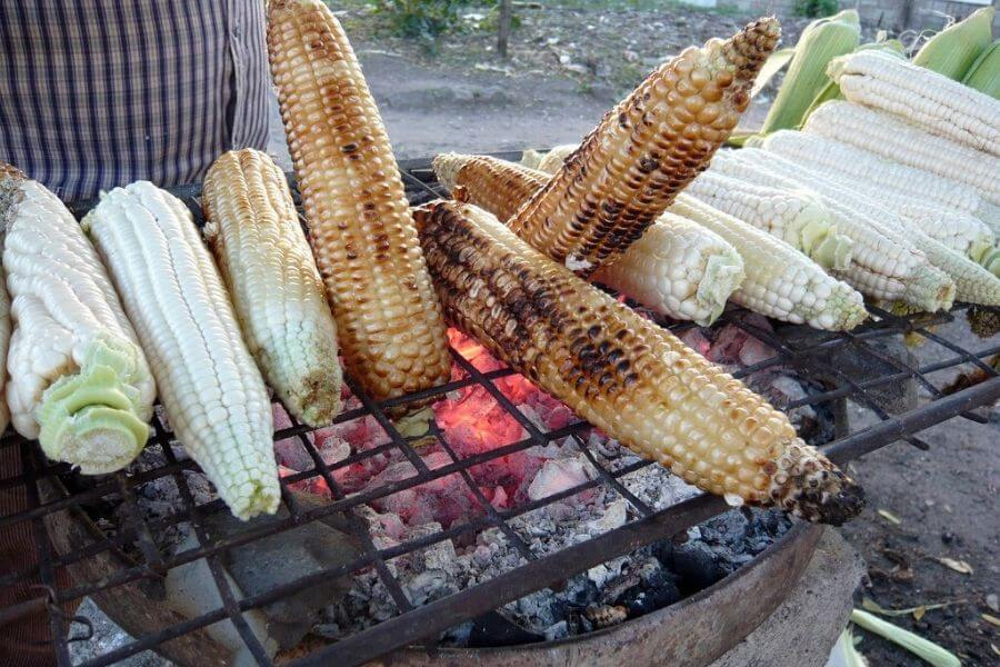 Grilled Maize